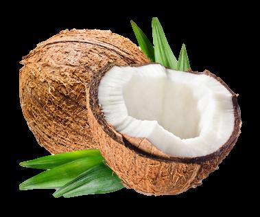huile de coco | Soins Naturels Cheveux Crépus à l'Huile de Noix de Coco et Beurre de Karité
