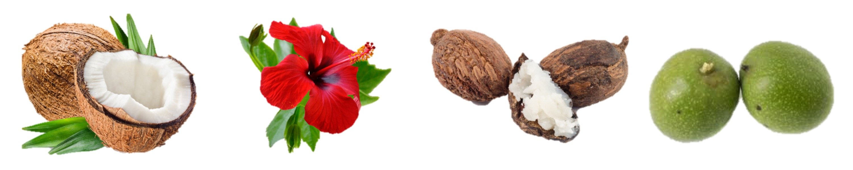 ingredients-aullyn