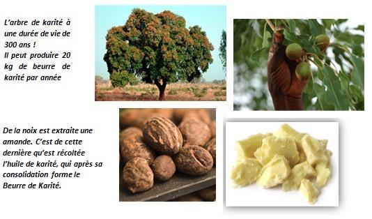 Où et comment est produit le Beurre de Karité ? | Aullyn Soins Naturels pour cheveux crépus